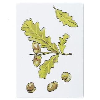 Kartka pocztowa z motywem roślinnym (dąb)