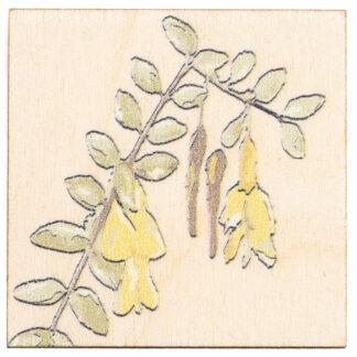 Magnes na sklejce z motywem roślinnym (akacja)